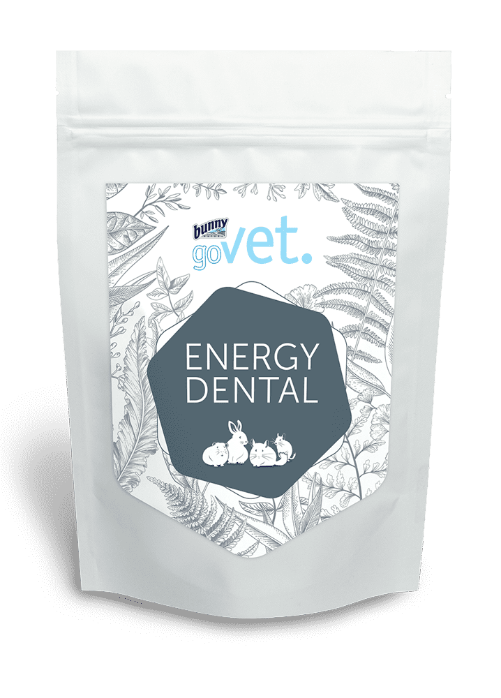 goVet ENERGY DENTAL