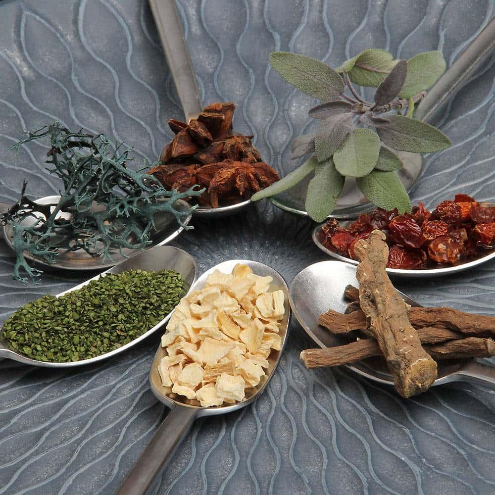 Piante ed erbe aromatiche officinali