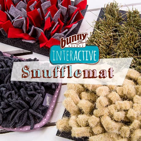 Snuffelmats | Our occupation for active fur noses