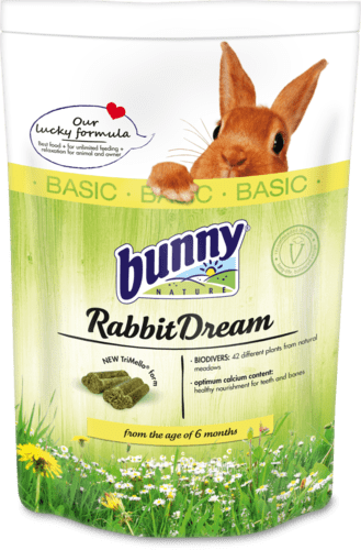 RabbitDreamBASIC