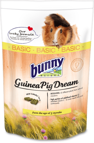 GuineaPigDreamBASIC