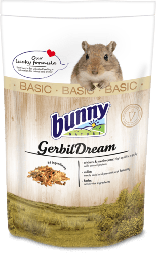 GerbilDreamBASIC